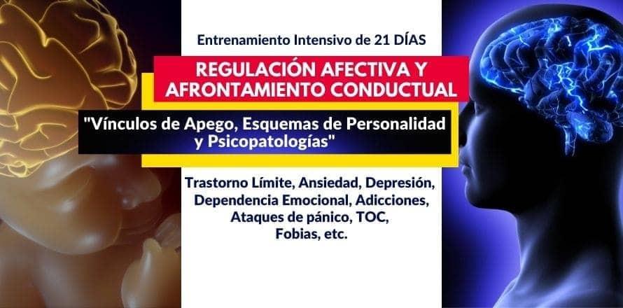 """Regulación Afectiva y Afrontamiento Conductual """"Vínculos de Apego, Esquemas de Personalidad y Psicopatologías"""""""